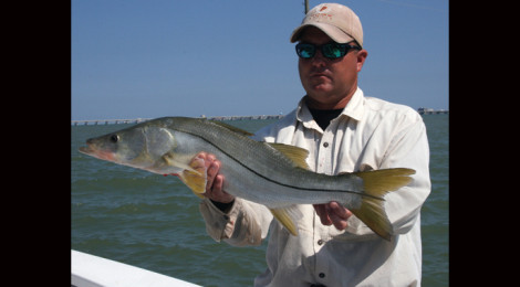 Snook Opportunities, Strategies