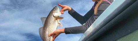 Flexible Fishing in February