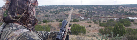 West Texas Coyote Challenge