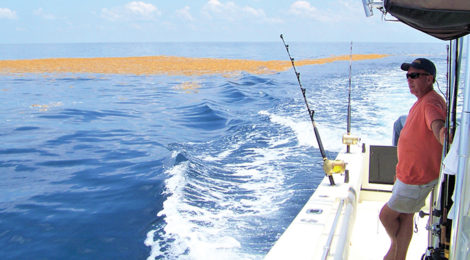 PRIME TIME OFFSHORE FISHING BEGINS