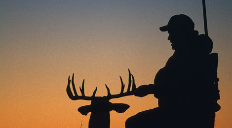 """Deer, It's What's For Dinner"""