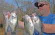 April's Spawning Crappie