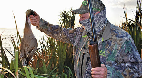 Duck Blinds Made Easy